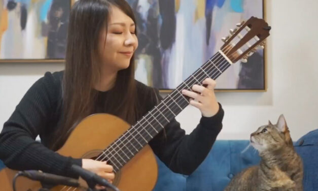 Japanese Classical Guitar